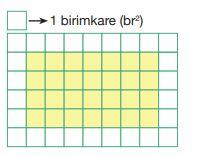 Yanda kareli kağıtta verilen boyalı dikdörtgenin alanını kaçtır 2