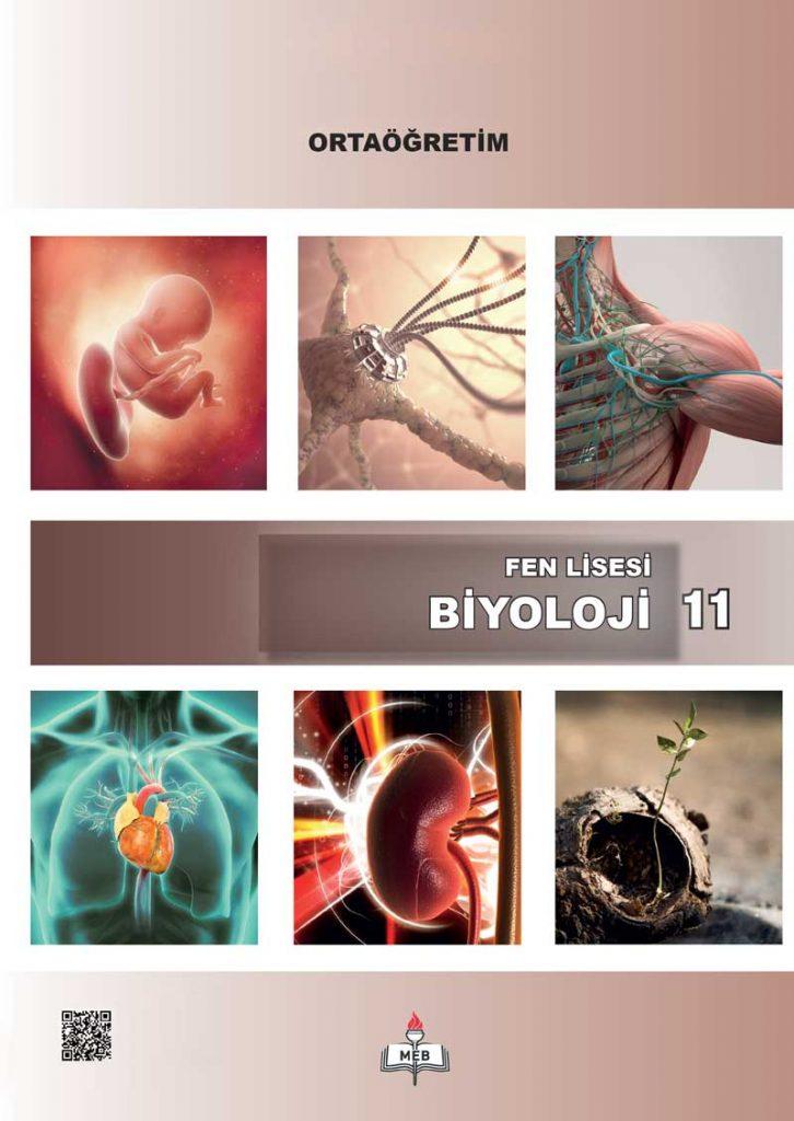 11. Sınıf Fen Lisesi Biyoloji Ders Kitabı Çözümleri ve Cevapları Meb Yayınları