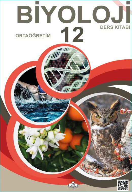 12. Sınıf Biyoloji Ders Kitabı Çözümleri ve Cevapları Meb Yayınları